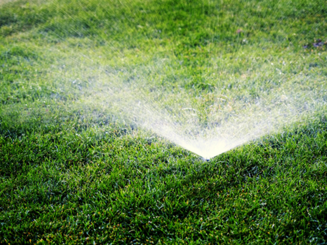 Stop Overwatering on Your Lawn